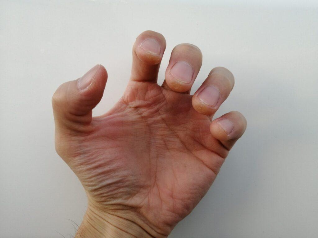 猫の手のように指を曲げている手